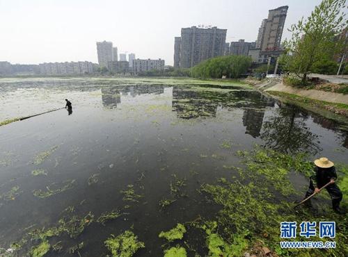 藏龙岛科技园位于武汉市主城南端,是武汉江夏经济开发区的重要组成